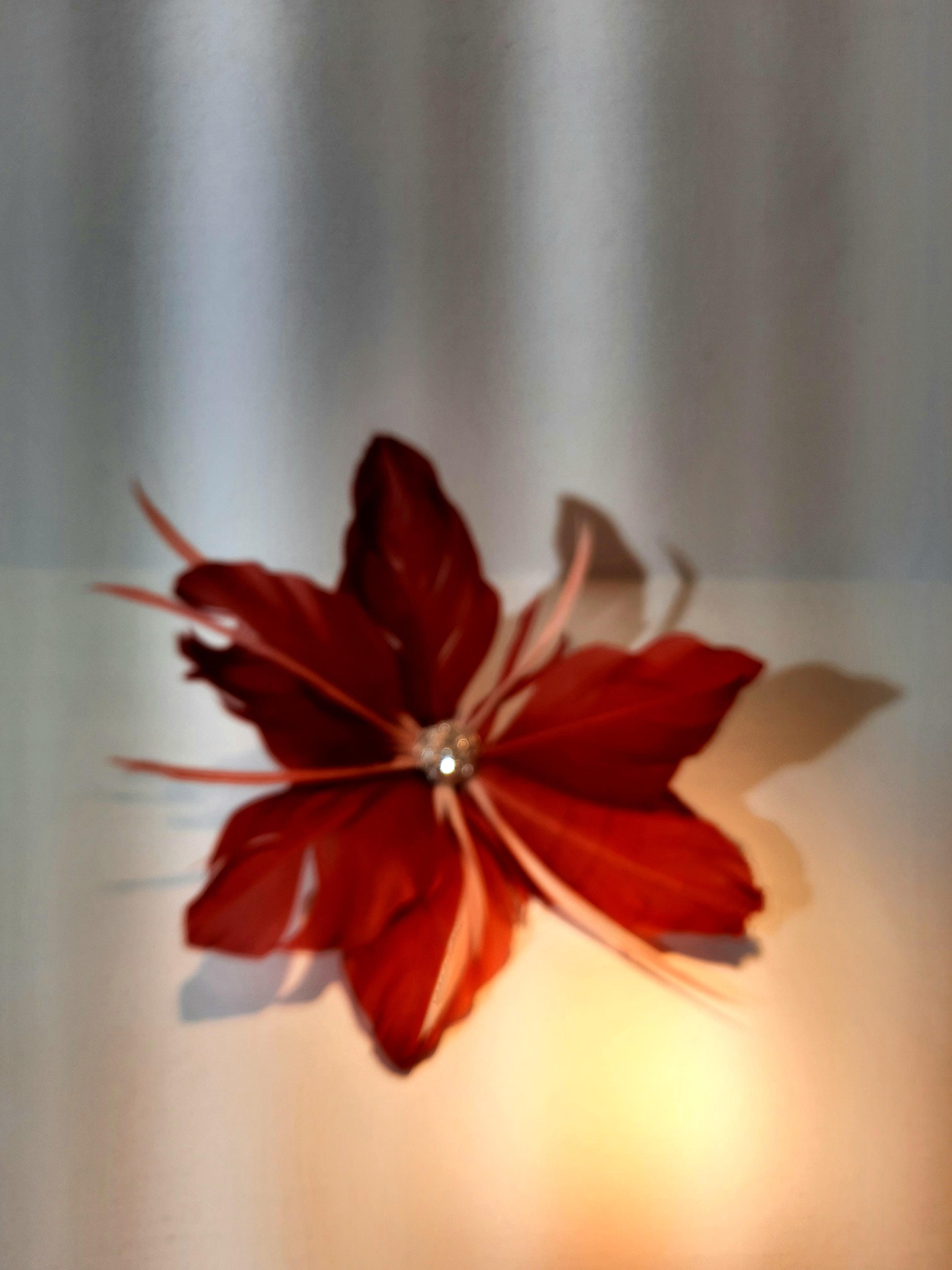 Blüte / Fascinator